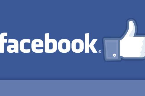 Article : Facebook : Le nouveau comptoir des Waka