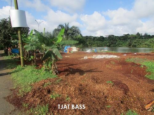Rafistolage du parcours Vita à Douala