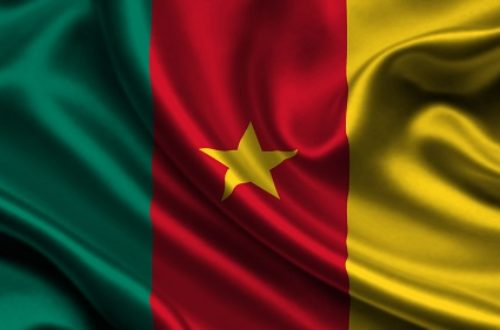 Article : 05 Questions sur le Cameroun
