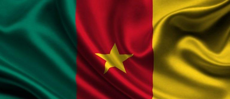 Article : 05 Questions sur le Cameroun